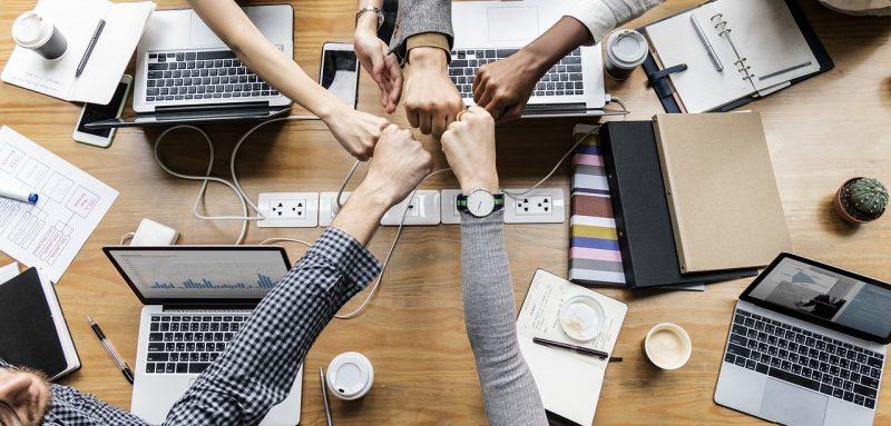 شركاء تقسيم حصص الشركة